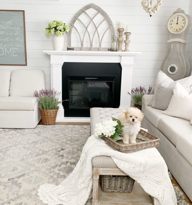 Spring Living Room Refresh with Bed Bath & Beyond